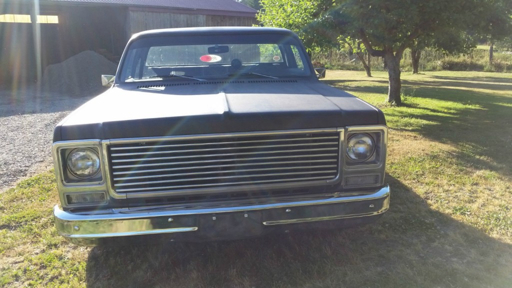1979 Chevrolet C 10 Chopped Stepside